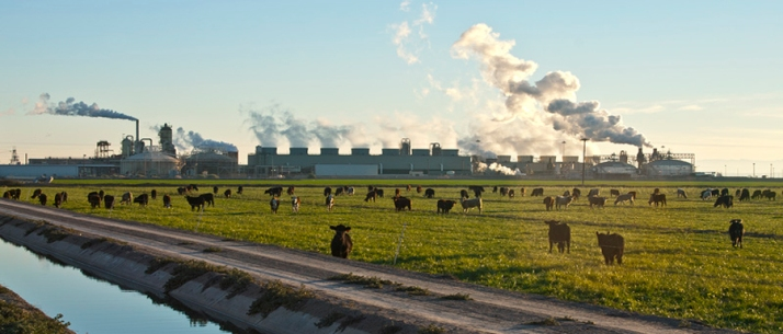 cows_ditch_geoLG-900x385
